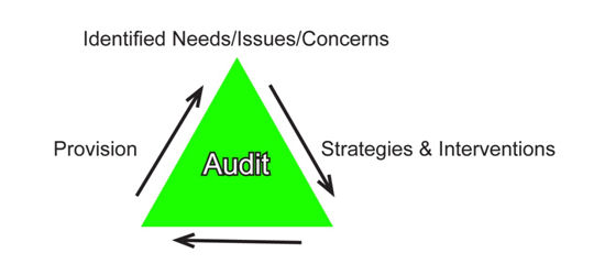 School Improvement Services Audit
